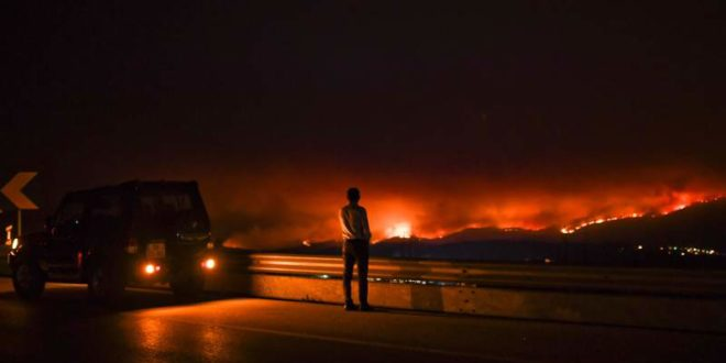 Incendio forestal deja 62 muertos en Portugal
